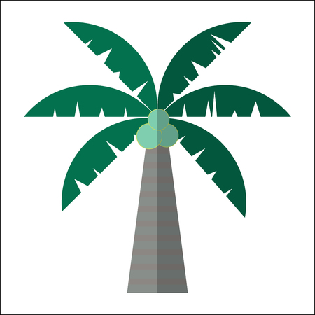 Palm tree icon isolated vector illustration. Cartoon symbol in material flat style design. Illustration