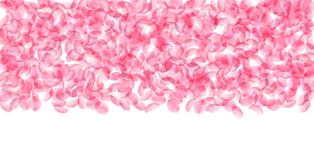 Sakura petals falling down. Romantic pink silky big flowers. Thick flying cherry petals. Wide top gradient appealing vector background. Love, affection, romance concept.