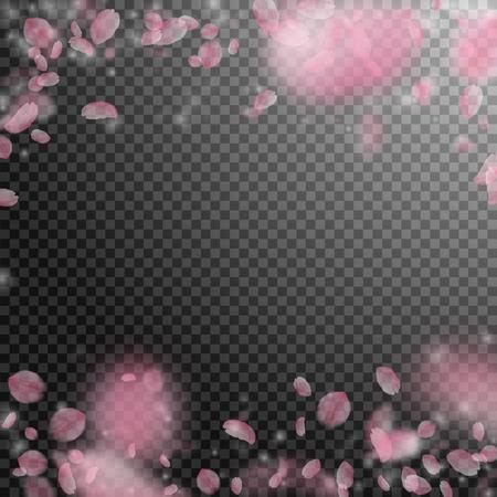 Sakura petals falling down. Romantic pink flowers falling rain. Flying petals on transparent square background. Love, romance concept. Pleasing wedding invitation.