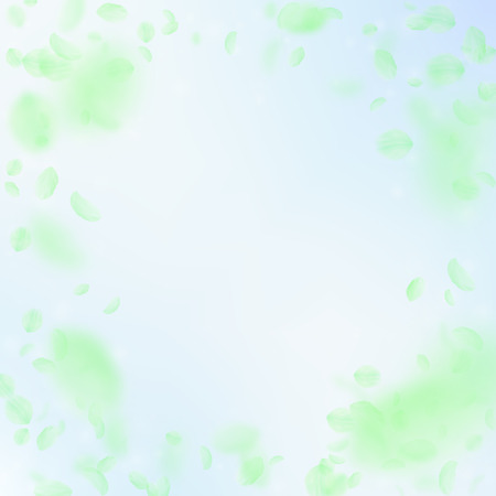 Green flower petals falling down. Majestic romantic flowers vignette. Flying petal on blue sky square background. Love, romance concept. Cute wedding invitation.