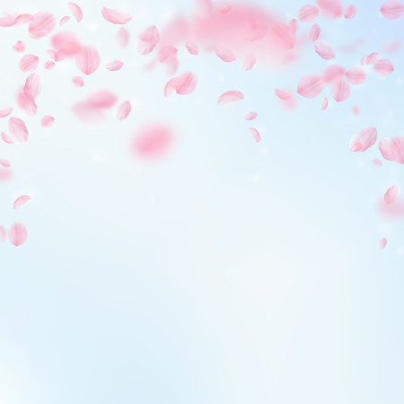 Sakura petals falling down. Romantic pink flowers falling rain. Flying petals on blue sky square background. Love, romance concept. Fascinating wedding invitation. Illustration