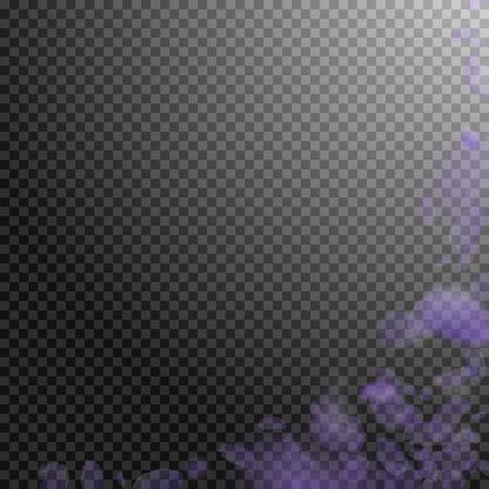 Violet flower petals falling down. Tempting romantic flowers corner. Flying petal on transparent square background. Love, romance concept. Admirable wedding invitation.