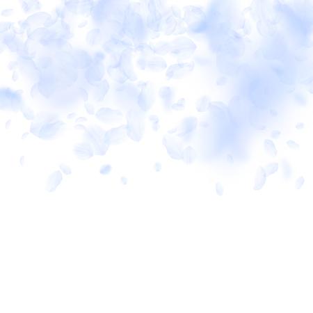 Pétalos de flores de color azul claro cayendo. Increíble gradiente de flores románticas. Pétalo volador sobre fondo cuadrado blanco. Amor, concepto de romance. Invitación de boda extraña. Ilustración de vector