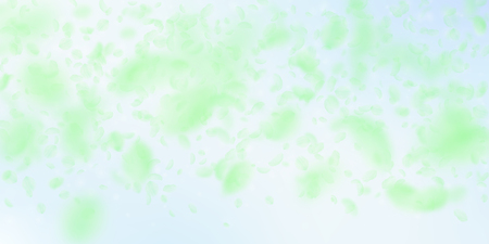 Green flower petals falling down. Fantastic romantic flowers gradient. Flying petal on blue sky wide background. Love, romance concept. Divine wedding invitation.