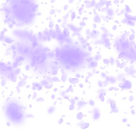 Violet flower petals falling down. Resplendent romantic flowers gradient. Flying petal on white square background. Love, romance concept. Bold wedding invitation.