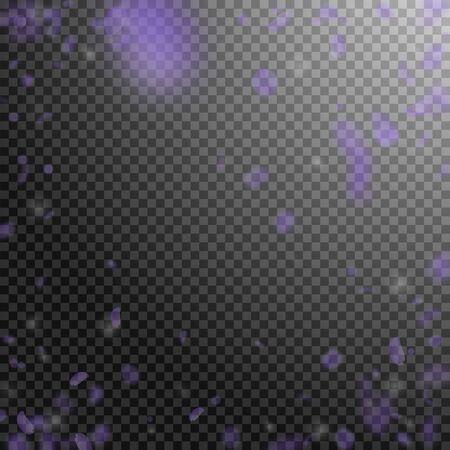Violet flower petals falling down. Delightful romantic flowers vignette. Flying petal on transparent square background. Love, romance concept. Cute wedding invitation. Reklamní fotografie - 124648662