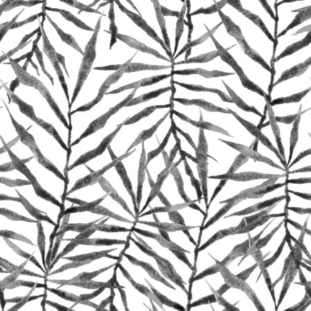 Tropical seamless pattern. Watercolor thorny palm leaves, japanese bamboo. Black and white exotic swimwear design. Summer tropic repeated print. Remarkable textile illustration.