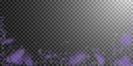 Violet flower petals falling down. Charming romantic flowers falling rain. Flying petal on transparent wide background. Love, romance concept. Delightful wedding invitation. Ilustracja