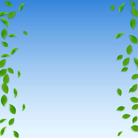 Falling green leaves. Fresh tea chaotic leaves flying. Spring foliage dancing on blue sky background. Actual summer overlay template. Admirable spring sale vector illustration.