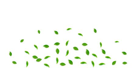 Falling green leaves. Fresh tea random leaves flying. Spring foliage dancing on yellow green background. Amazing summer overlay template. Eminent spring sale vector illustration.