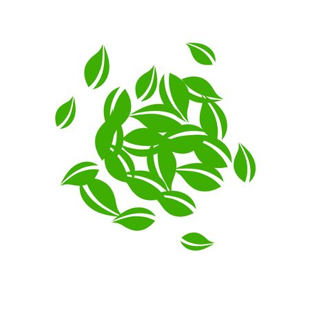 Falling green leaves. Fresh tea neat leaves flying. Spring foliage dancing on white background. Admirable summer overlay template. Brilliant spring sale vector illustration.