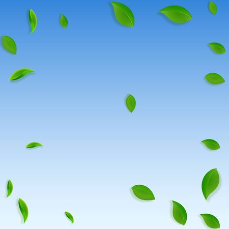 Falling green leaves. Fresh tea chaotic leaves flying. Spring foliage dancing on blue sky background. Alluring summer overlay template. Admirable spring sale vector illustration. Çizim