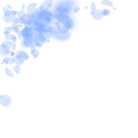 Dark blue flower petals falling down. Good-looking romantic flowers corner. Flying petal on white square background. Love, romance concept. Amusing wedding invitation.