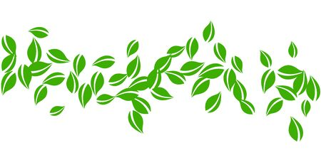 Falling green leaves. Fresh tea neat leaves flying. Spring foliage dancing on white background. Amusing summer overlay template. Bold spring sale vector illustration.