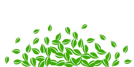 Falling green leaves. Fresh tea neat leaves flying. Spring foliage dancing on white background. Amazing summer overlay template. Emotional spring sale vector illustration.