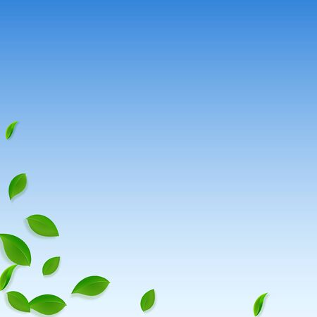 Falling green leaves. Fresh tea chaotic leaves flying. Spring foliage dancing on blue sky background. Appealing summer overlay template. Mind-blowing spring sale vector illustration.