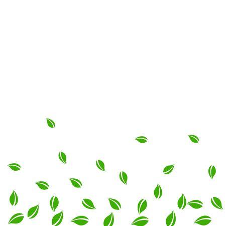 Falling green leaves. Fresh tea random leaves flying. Spring foliage dancing on white background. Alive summer overlay template. Dramatic spring sale vector illustration.
