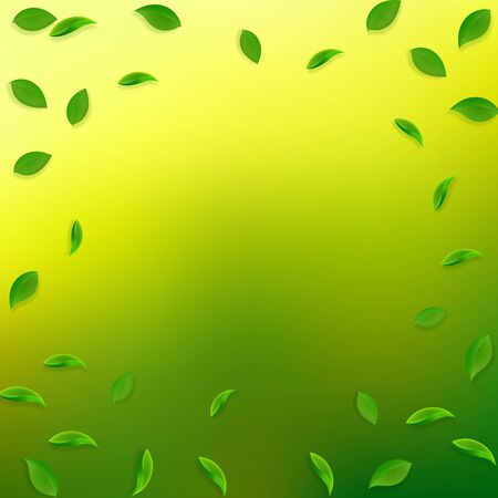 Falling green leaves. Fresh tea random leaves flying. Spring foliage dancing on yellow green background. Alluring summer overlay template. Bold spring sale vector illustration.