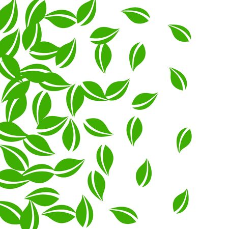 Falling green leaves. Fresh tea neat leaves flying. Spring foliage dancing on white background. Alive summer overlay template. Classic spring sale vector illustration.