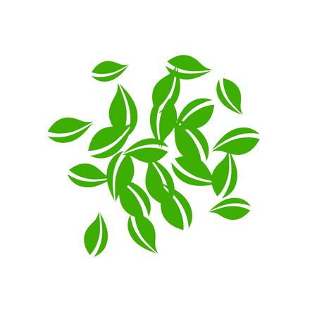 Falling green leaves. Fresh tea neat leaves flying. Spring foliage dancing on white background. Actual summer overlay template. Trending spring sale vector illustration.