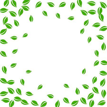 Falling green leaves. Fresh tea random leaves flying. Spring foliage dancing on white background. Alluring summer overlay template. Brilliant spring sale vector illustration.