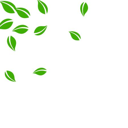 Falling green leaves. Fresh tea neat leaves flying. Spring foliage dancing on white background. Actual summer overlay template. Flawless spring sale vector illustration.