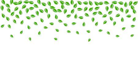 Falling green leaves. Fresh tea random leaves flying. Spring foliage dancing on white background. Amusing summer overlay template. Unusual spring sale vector illustration.