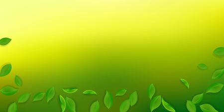 Falling green leaves. Fresh tea neat leaves flying. Spring foliage dancing on white background. Amazing summer overlay template. Unusual spring sale vector illustration. Çizim