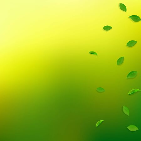 Falling green leaves. Fresh tea random leaves flying. Spring foliage dancing on yellow green background. Alive summer overlay template. Likable spring sale vector illustration.