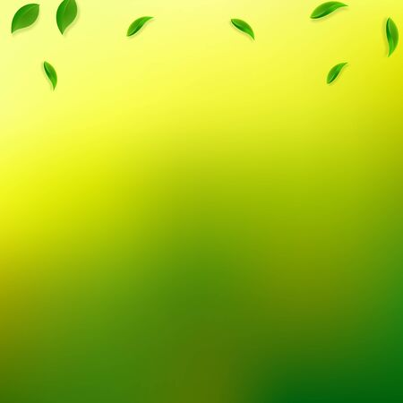 Falling green leaves. Fresh tea random leaves flying. Spring foliage dancing on yellow green background. Alive summer overlay template. Optimal spring sale vector illustration. Çizim