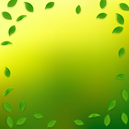 Falling green leaves. Fresh tea random leaves flying. Spring foliage dancing on yellow green background. Alluring summer overlay template. Imaginative spring sale vector illustration. Çizim