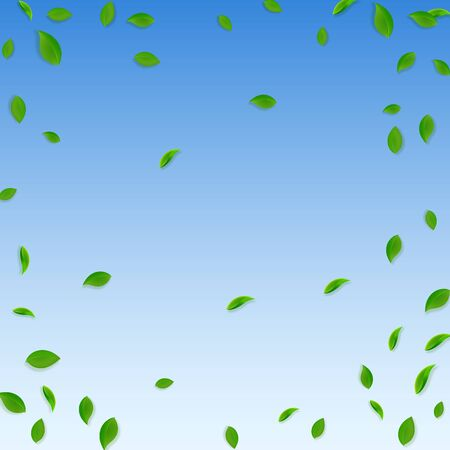 Falling green leaves. Fresh tea chaotic leaves flying. Spring foliage dancing on blue sky background. Alluring summer overlay template. Alive spring sale vector illustration.
