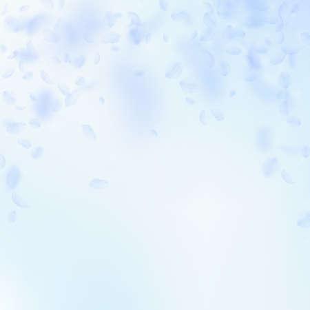 Light blue flower petals falling down. Pleasant romantic flowers falling rain. Flying petal on blue sky square background. Love, romance concept. Awesome wedding invitation. Ilustração