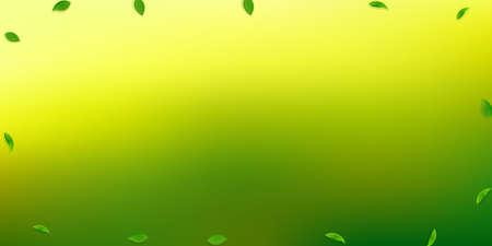 Falling green leaves. Fresh tea random leaves flying. Spring foliage dancing on white background. Amusing summer overlay template. Resplendent spring sale vector illustration.