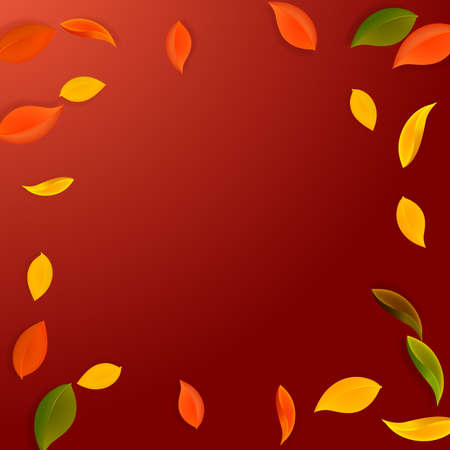 Falling autumn leaves. Red, yellow, green, brown neat leaves flying. Vignette colorful foliage on favorable red background. Brilliant back to school sale.