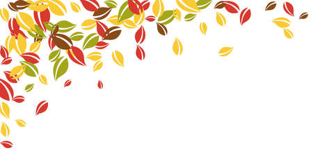 Falling autumn leaves. Red, yellow, green, brown chaotic leaves flying. Falling rain colorful foliage on imaginative white background. Captivating back to school sale.
