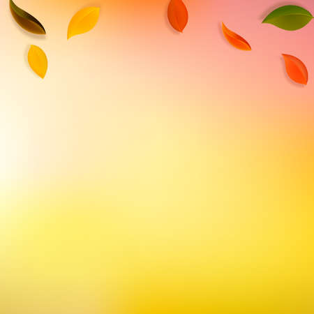 Falling autumn leaves. Red, yellow, green, brown neat leaves flying. Gradient colorful foliage on remarkable sunset background. Breathtaking back to school sale.