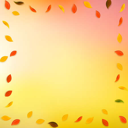 Falling autumn leaves. Red, yellow, green, brown random leaves flying. Frame colorful foliage on terrific sunset background. Authentic back to school sale. Illusztráció