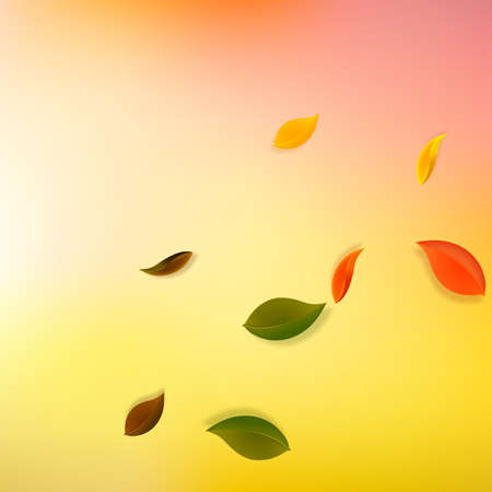 Falling autumn leaves. Red, yellow, green, brown neat leaves flying. Corner colorful foliage on unique sunset background. Attractive back to school sale.
