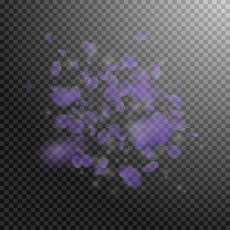 Violet flower petals falling down. Posh romantic flowers explosion. Flying petal on transparent square background. Love, romance concept. Attractive wedding invitation.