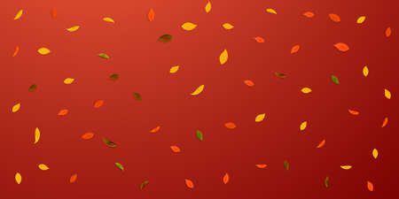 Falling autumn leaves. Red, yellow, green, brown random leaves flying. Falling rain colorful foliage on nice red background. Captivating back to school sale.