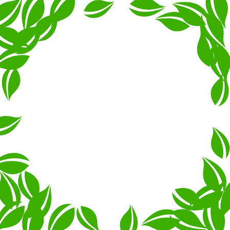 Falling green leaves. Fresh tea neat leaves flying. Spring foliage dancing on white background. Alluring summer overlay template. Fine spring sale vector illustration.