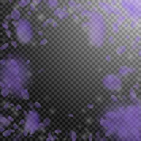 Violet flower petals falling down. Dramatic romantic flowers vignette. Flying petal on transparent square background. Love, romance concept. Dazzling wedding invitation.