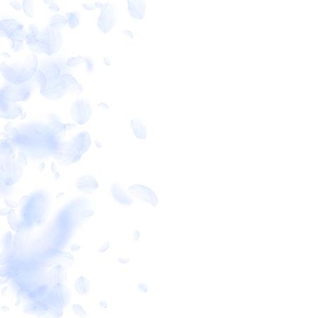 Light blue flower petals falling down. Ravishing romantic flowers gradient. Flying petal on white square background. Love, romance concept. Brilliant wedding invitation.  イラスト・ベクター素材