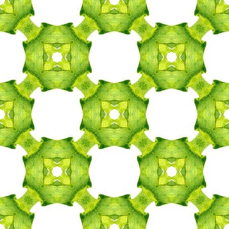 Textile ready favorable print, swimwear fabric, wallpaper, wrapping. Green splendid boho chic summer design. Green geometric chevron watercolor border. Chevron watercolor pattern.