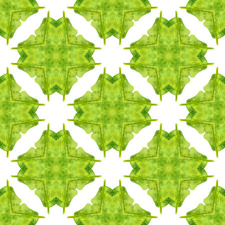 Medallion seamless pattern. Green incredible boho chic summer design. Watercolor medallion seamless border. Textile ready posh print, swimwear fabric, wallpaper, wrapping.