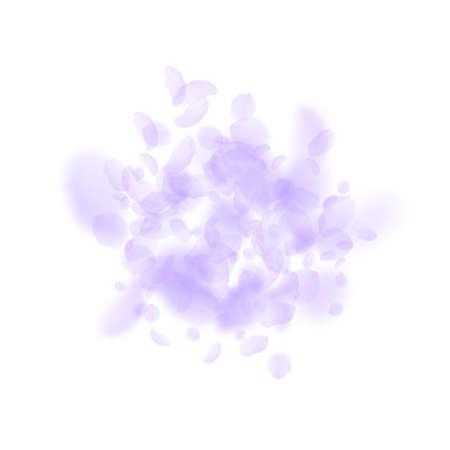 Violet flower petals falling down. Alive romantic flowers explosion. Flying petal on white square background. Love, romance concept. Attractive wedding invitation. Ilustração