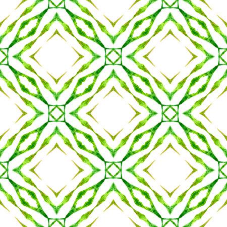 Oriental arabesque hand drawn border. Green indelible boho chic summer design. Arabesque hand drawn design. Textile ready stylish print, swimwear fabric, wallpaper, wrapping.