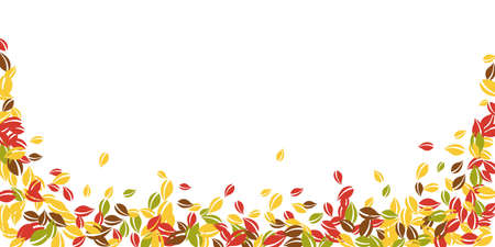 Falling autumn leaves. Red, yellow, green, brown chaotic leaves flying. Falling rain colorful foliage on sublime white background. Captivating back to school sale.