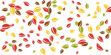 Falling autumn leaves. Red, yellow, green, brown chaotic leaves flying. Falling rain colorful foliage on original white background. Captivating back to school sale.